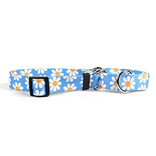 Yellow Dog Design Martingale Slip Collar, Blue Daisy, Small 14
