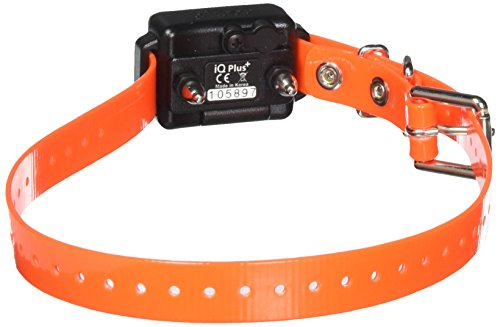 Dogtra Company IQ Plus ADD. RX. Collar ()