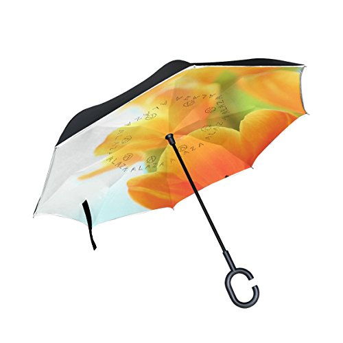 XiangHeFu - Paraguas invertido de Doble Capa con Cierre de ...
