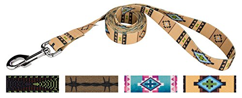 (Country Brook Design | 1 Inch Native Southwestern Leash Limited Edition - 2 Feet)