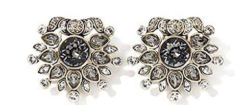 Heidi Daus SWAROVSKI Crystal Floral Clip Earrings ~ Feast of (Rhinestone Floral Clip Earrings)