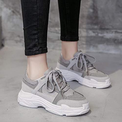 Transpirables Las Casuales Planos Amortiguación Zapatos Mujeres De Zapatillas Otoño Del Ligeras Ysfu IxRpzUwq8