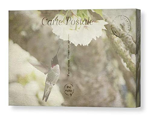Hummingbird Photography on CANVAS Dreamy Flower Photo 1909 Paris Post Card Print Floral Wall Art Antique French Postcard Spring Mixed Media Ready to Hang 8x12 12x18 16x24 20x30
