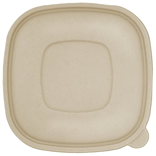 Fiber Ingeo - World Centric BQL-CS-24 100% Compostable Ingeo Fiber Square Bowl Clear Lids for 24-48 oz. Bowls (Pack of 200)