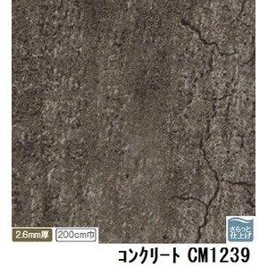 【訳あり在庫処分】サンゲツ 店舗用クッションフロア コンクリート 品番CM-1239 サイズ 200cm巾×8m B07PDCLCRW
