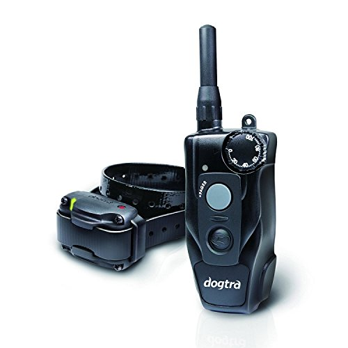 compact 1 remote dog trainer
