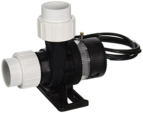 LAING E14-NSTN2W-10 Spa Circulation Pump
