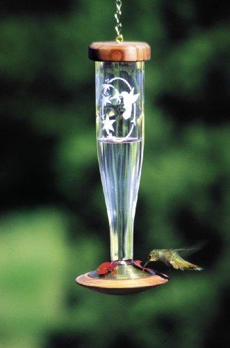 Schrodt Crystal Etched Lantern Hummingbird Bird Feeder
