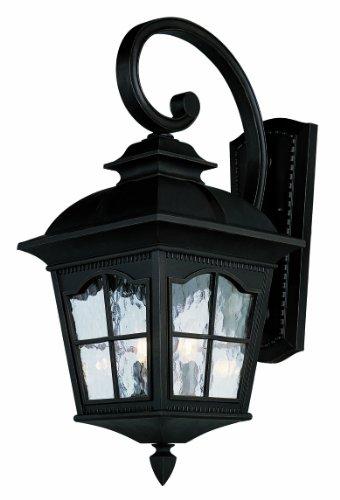 Trans Globe Lighting 5429 BK Outdoor Briarwood 21.5