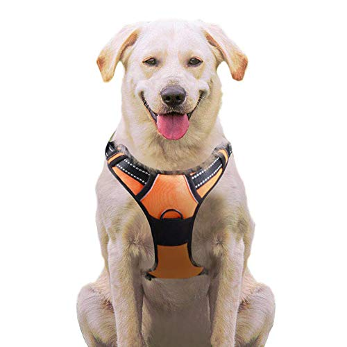 Eagloo No Pull Dog Harness with Front Clip, Walking Pet Harness with 2 Metal Ring and Handle Reflective Oxford Padded Soft Vest for Small Medium Large Breed (Orange, M)