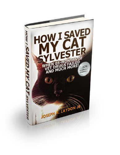 How I Saved My Cat Sylvester When 05-Months Of Vet Drugs Failed And Much - Vet Drug