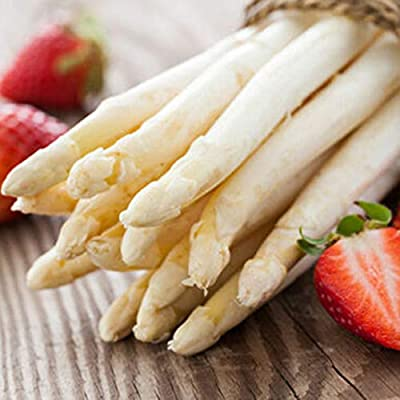 Ywbtuechars White Asparagus Seeds, 20Pcs Rare Non-GMO Perennials Plant Organic Vegetables White Asparagus Seeds, Can Survive in Any Soil Environment - 20pcs White Asparagus Seeds : Garden & Outdoor