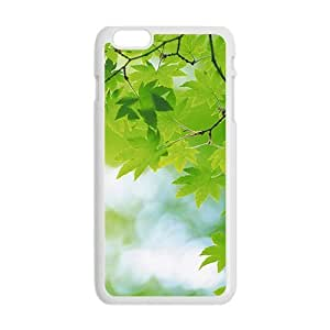 Fresh Maple Trees White Phone Case for Iphone6 plus