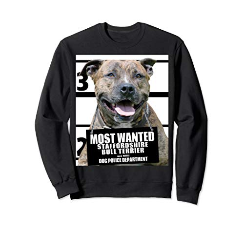 - Most Wanted Staffordshire Bull Terrier Dog Sweatshirt A