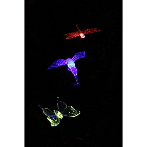 Amazon.com : Solar Garden Stake Lights Hummingbird, Dragonfly And Butterfly  LED Lawn Lights (3) : Garden U0026 Outdoor