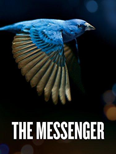 Messenger Journey - The Messenger [English]