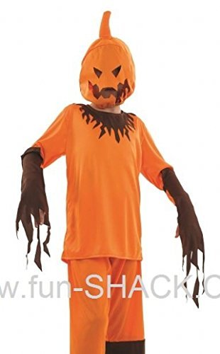 Scary Pumpkin Girl Halloween Costume by fun shack  sc 1 st  CAS Michigan : pumpkin girl costume  - Germanpascual.Com
