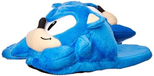 Slipper The Slipper Hedgehog The Sonic Hedgehog Sonic RxgwYHqZ