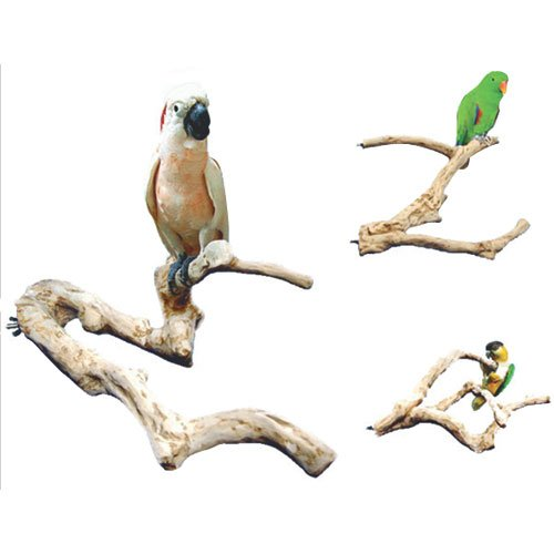 Java Wood Multi Branch Perch - Large - 26 in. x 2.4 in. - Branch Perch