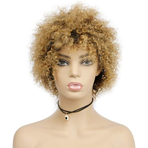 Goldfinch Blonde Ombre Short Afro Curly Wig 100% Brazilian Human Hair Afro Wig Short Kinky Curly Puffy Wig Black to Honey Blonde Wig Fluffy Tight Curls 5 inches (1b/27)