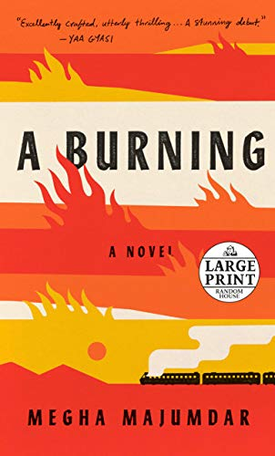Book Cover: A Burning: A novel