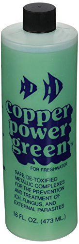Copper Power (Endich) ACP0016G Green Treatment for Freshwater, 16-Ounce