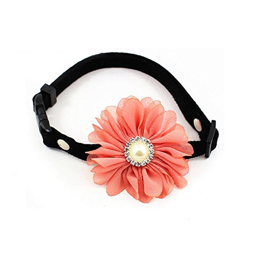 petfavoritestm-designer-rhinestones-daisy-flower-charm-suede-leather-pet-cat-dog-bow-tie-collar-neck