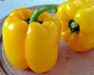 Yellow Bell Pepper Seeds, Golden California Wonder, Heirloom Pepper Seeds, 50ct