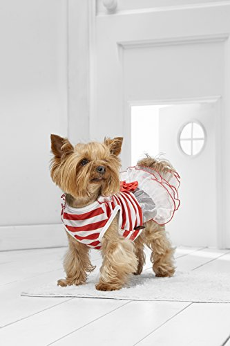 Toy Dog Tutu Dress For Yorkie Maltese Chihuahua Pom Papillon Min Pin Mini Foxie (Small Toy Size, red)