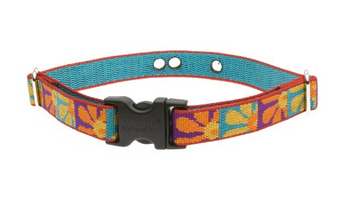 Lupine 3/4-Inch Crazy Daisy 12-17-Inch Containment Collar Strap for Small to Medium Dogs, My Pet Supplies