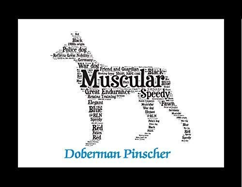 Doberman Pinscher Dog Wall Art Print - Personalized with Name - Gift for Her or Him - 11x14 matted - Ships 1 Day