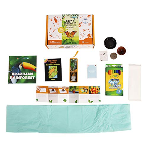 Grow a Milkweed Tropical Asclepias Activity Kit Organic /& Green Toys for Ages 5 to 11 Fat Brain Toys Surprise Ride