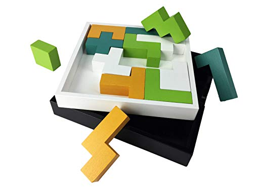 (Project Genius Just Teasing for Minds On The Grow - Pentominos Puzzle, Assorted)