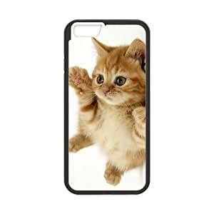 Case Cover For Apple Iphone 5C Cute Kitty Cat Hard Frame & PC Hard Back Protective Cover Bumper Case for Case Cover For Apple Iphone 5C (2014)
