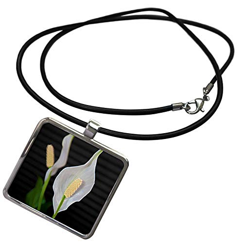 3dRose Jos Fauxtographee- Peace Lily Plant - A Close up of Some White Flowers on a Peace Lily Plant - Necklace with Rectangle Pendant (ncl_300189_1)
