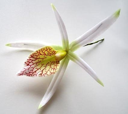 (8) blanco flores hawaianas Cattleya Cymbidium flor de seda cabezas – 10,16