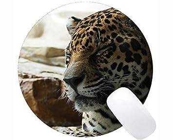 Yanteng Cojín de ratón Redondo de la Serie Original de ...