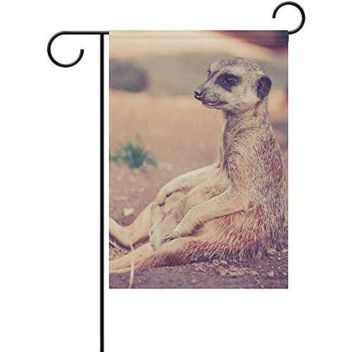 Meerkat Garden Lights in US - 4