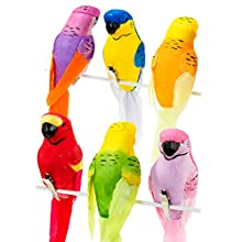 Talking Tables Fst3-Bird Tropical Birds, Multicolor