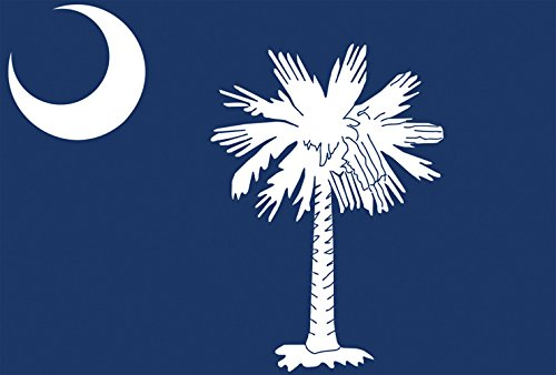 Toland Home Garden South Carolina State Flag 12.5 x 18 Inch Decorative USA Garden Flag
