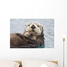 Wallmonkeys Female Sea Otter Holding Wall Mural by Peel and Stick Graphic (24 in W x 16 in H) WM338366