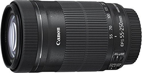Canon EF-S 55-250mm f/4-5 6 IS STM Telephoto Zoom Lens International Version (No Warranty)