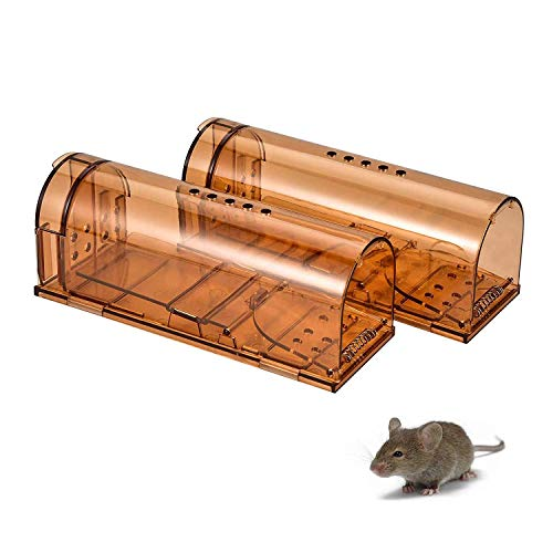 jingtai Humane Mouse Trap, No Kill Small Mice Traps That Work for for Small Rodent/Voles/Hamsters/Moles Catcher, Indoors Outdoors Pack of 4 with Cleaning Brush