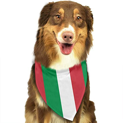 - CWWJQ88 Italian Flag Pet Dog Bandana Triangle Bibs Scarf - Easy to Tie On Your Dogs & Cats Pets Animals - Comfortable and Stylish Pet Accessories