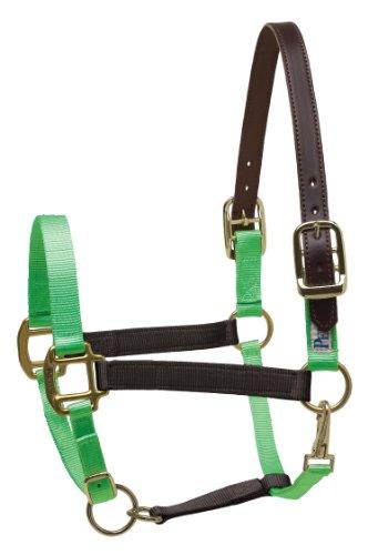 Perri's Safety Halter, Black/Lime, - Halter English