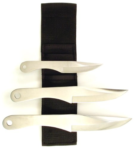 Stainless Steel Throwing Knife Set (RUKO 3-Piece Stainless Steel Throwing Knife Set with Web Nylon Sheath (6 x 8-1/2 x 9-1/2-Inch))
