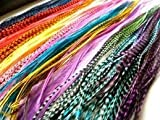 (60) 7''-10'' Individual Vivid Color Grizzly & Solid Feathers with 40 Beads