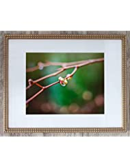 Raindrop on Branch, Limited Edition 1, Photo 4 of 4 - Framed Office Art- Inspirational 24x30-with 20x24-mat