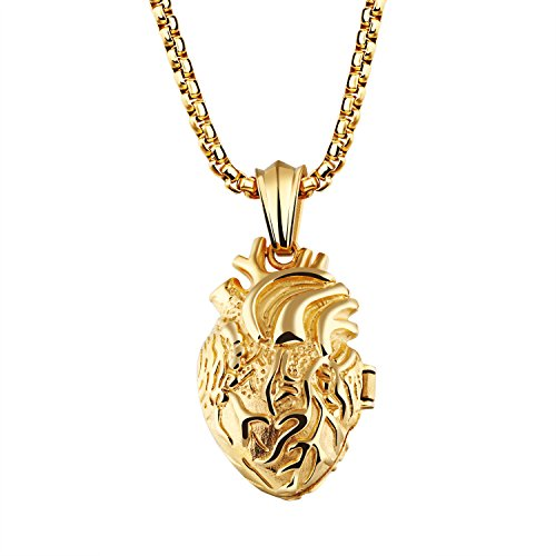 Fate Love Stainless Steel Anatomical Heart Locket Pendant Necklace for Men Women, ()