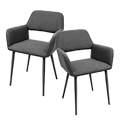 TUSY Accent Arm Chairs(Set of 2) Modern Living Dining Room Chairs with Iron Legs (Gray)